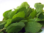 natural healing solutions with peppermint