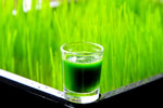 natural healing wheatgrass for more than breast cancer